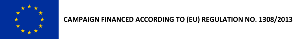 Logo OCM